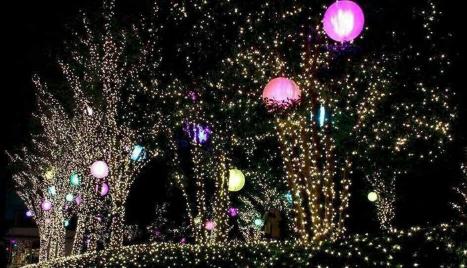 10m_100_LEDs_Pink_Christmas_2