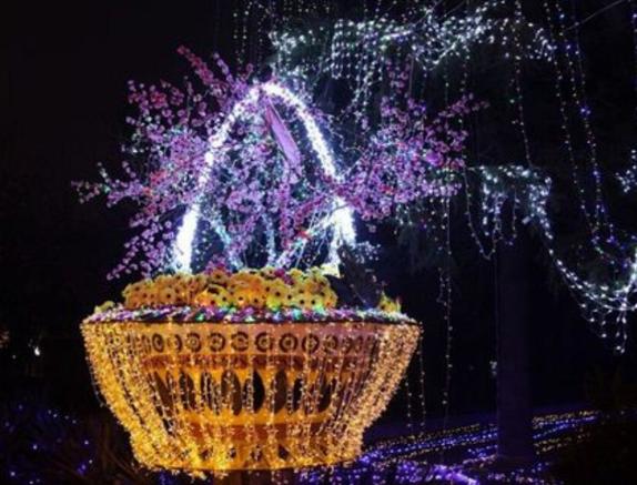 Warm_White_LED_String_Lights_10m_100_LEDs_1
