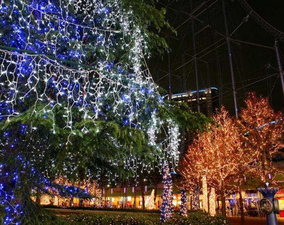 Warm_White_LED_String_Lights_10m_100_LEDs_2