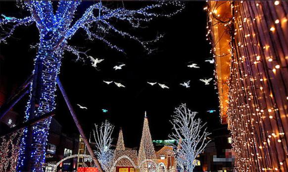 Warm_White_LED_String_Lights_10m_100_LEDs_4