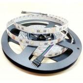 24V 5050 SMD RGBW Flexible LED Strip Light 4 Color In 1 Led 60leds/M