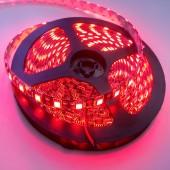 12V Black PCB 5050 Red Waterproof LED Strip Light 5M 300 LEDs