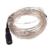 12Vdc 10M 100 Leds LED Silver Copper Wire String Light Christmas Fairy Light