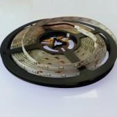 5M 300 LEDs Waterproof SMD 3528 LED Flexible Strip Light 12V
