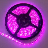 5M 3528 Pink Color LED Flexible Strip Light 12V 300 Leds Tape LIght