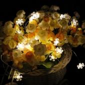 Sun Flower Warm White 10M 100 LED Copper Wire Fariy String Light 12V